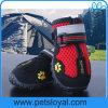 Produit magique r3fléchissant de crabot de bande d'animal familier de gaines de chaussures de luxe de crabot