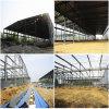 Construction de encadrement d'atelier d'acier léger de mesure