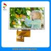 4.3 экран дюйма TFT LCD с 500 факторами контрастности