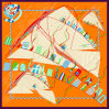 Красивые цифровой печати шелковые шарфы (F13-0011)