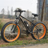 최고 질 뚱뚱한 타이어 E 자전거 (RSEB-508)