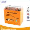 Batteries grandes de gel de moto de la capacité Ytx14-BS 12V 14ah de CCA