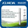 Bombas solares de la C.C. |Imán permanente|Motor sin cepillo de la C.C. |El motor se llena de agua|Receptor de papel solar Pumps-4sp2/5 (ÉL)