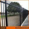 Frontière de sécurité extérieure noire de fer travaillé pour le jardin