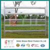 Rete fissa animale esterna dell'azienda agricola delle pecore del cavallo del cancello della rete fissa del cavallo della rete fissa