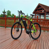 36V 250W Central Middle MID Motor Driving Mountain Electric Bike