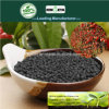 Il carbonio di Kingeta ha basato il fertilizzante composto NPK 18-18-6 per frutta