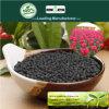 Minuto naturale del fertilizzante organico 45% con gli argomenti organici e l'acido di Fulvic