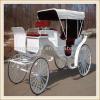 Carro traído por caballo de la boda blanca elegante