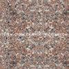 Pavimento di pietra rosso del granito della pesca G687 per le mattonelle/scale della cucina