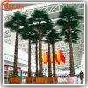 Ventilatore conservato in vaso artificiale tutti i generi di alberi della plastica delle foglie di palma