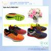 La maille d'air folâtre les chaussures, chaussures courantes de sport de mode du plus défunt modèle pour les hommes