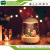 Lampada del Nightlight ricaricata Micro-Paesaggio creativo LED del regalo 2017 per l'albero di Natale