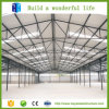 構造スチールフレームの倉庫の構築