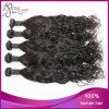 Loose caldo Curl 1b# Malaysian Virgin Human Hair Weft