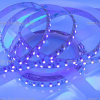 Flexibles LED Streifen-Licht der populären SMD3528 Traumfarben-