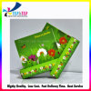 Design personalizado Laminação Brilhante Caixa de papel impresso a Cores