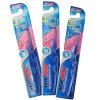 Cepillo de dientes adulto con PS manija Saling caliente en Brasil