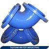 Garnitures de pipe malléables de fer (BSEN545, BSEN969, BSEN598)