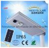 10W ha integrato tutti in un indicatore luminoso di via di energia solare LED