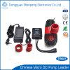 mini pompa di CC 24V per la fontana e la piscina