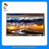 11.6-Inch 1366 (RGB) X768p TFT Bildschirmanzeige LCD-Bildschirm mit Motorpumpe-Schnittstelle für Notizbuch PC