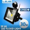 Luzes de inundação 30W da indução do diodo emissor de luz (LEJE-TG302)