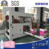自動プラスチックびんのカートンの包装業者機械
