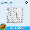Camminata prefabbricata del refrigeratore del frigorifero nella camminata fredda delle unità congelatore/del dispositivo di raffreddamento nella cella frigorifera