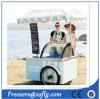 Gelado móvel do triciclo do Popsicle do carro italiano de Gelato que empurra carros da rua para a venda (CE)