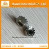 Pente d'or 304 de fournisseur d'acier inoxydable 1/4  ~5/8  noix de Kep