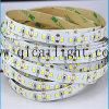 Streifen der Shenzhen-Fabrik-direktes Zubehör-Nano Beschichtung-IP65 2835 LED