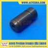 Валы нитрида кремния керамические и Si3n4 штанги