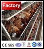 긴 사용 생활 닭 감금소