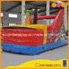 Diseño personalizado de bajo precio inflable barco pirata (AQ1524)