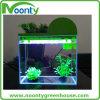 Mini Aquaponics Tank para Casa e Escritório, Fishbowl, Fish Globe; Pote De Peixe, Tanque De Peixe
