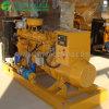 Conjunto de gerador de gás de metano aprovado ISO 10-100kw
