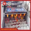 Fruits et légumes Brosse brosse parallèle de la machine à laver le rouleau de nettoyage d'arachide la rondelle