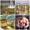 Fabrik-direktes Zubehör-aufbauende Steroid-Puder Boldenone Undecylenate für Bodybuilding
