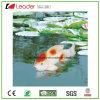 Decoração De Lagoa De Figurinhas De Peixe Flutuante De Venda Quente, Feita De PU e Poliresina