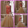 Rotes Spitze-Abend-Kleid-Goldtulle-Nixe-Hochzeits-Kleid N13074