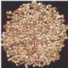 Ligero mullita revestimiento moldeable (RM-G Series)