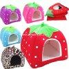 Chambres d'intérieur de chat de crabot de bâti d'animal familier de fraise