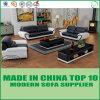Софа офиса самомоднейшей европейской живущий мебели комнаты реальная кожаный