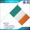 Poliéster mano de la bandera que agita, mano de plástico bandera bandera (L-NF01F02025)