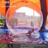 رخيصة داخليّ & خارجيّة قابل للنفخ ماء يمشي كرة