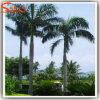 정원 훈장 섬유 유리 인공적인 코코야자 나무