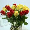 La flor artificial de Rose colorido PE Individual (SW01054)
