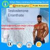 Alta calidad de testosterona enantato esteroides en polvo para el culturismo CAS 315-17-7