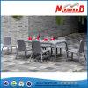 Vimine del patio di svago che pranza mobilia